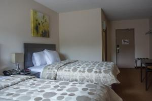 Two Queen Beds Ground floor (exterior Access only)
