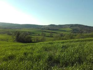 Agriturismo da Remo, Farm stays  Magliano in Toscana - big - 9