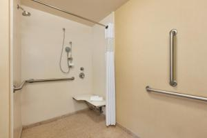 King Room - Disability Access Roll in Shower - Non-Smoking
