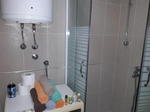 Apartment Red Lotus, Appartamenti  Novi Sad - big - 3