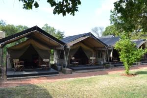 Tenda de Safari