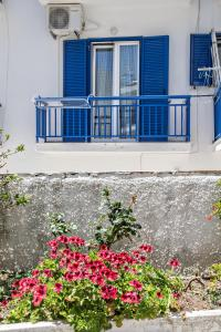 Cozy flat in Tinos, Appartamenti  Tinos Town - big - 8