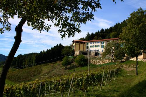 Polisena L'Altro Agriturismo