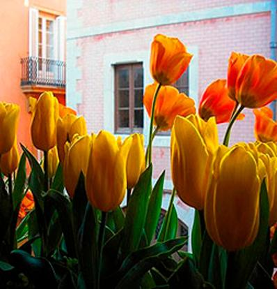 Boutique Hotel Davallada- Adults Only photo 19