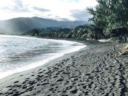 Tahiti Surf Beach Paradise Photo