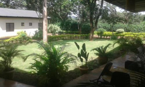 d lodge&bed and breakfast, Moshi