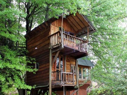 Sycamore Avenue Treehouse Accommodation Photo
