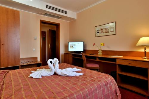 Hotel Brasov photo 26