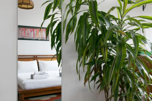 Hotel Buonocore Guesthouse thumb-4