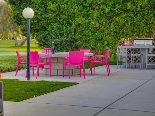 Pretty in Pink at Indian Canyons - Palm Springs, CA 92264