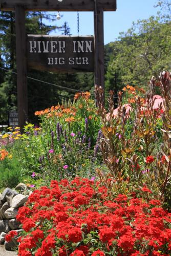 Big Sur River Inn - Big Sur, CA 93920