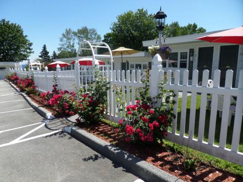 Claddagh Motel & Suites Photo