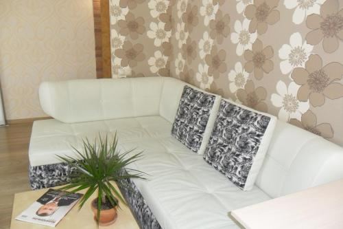 Studio Apartment with view on Kama, Perm