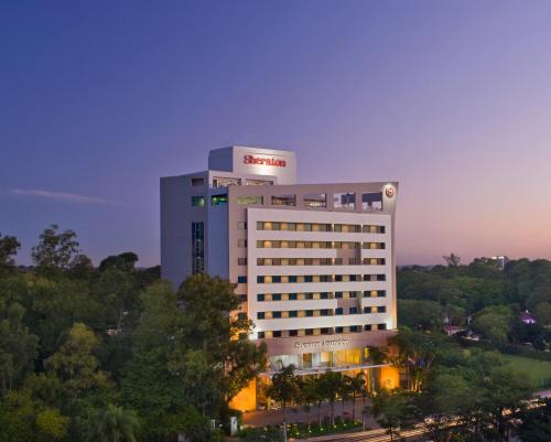 Sheraton Asuncion Hotel Photo