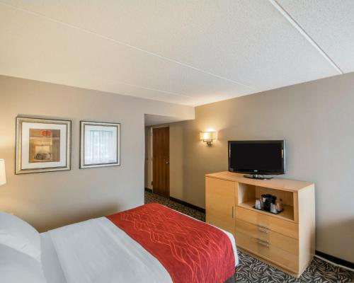 Comfort Inn Syracuse Photo