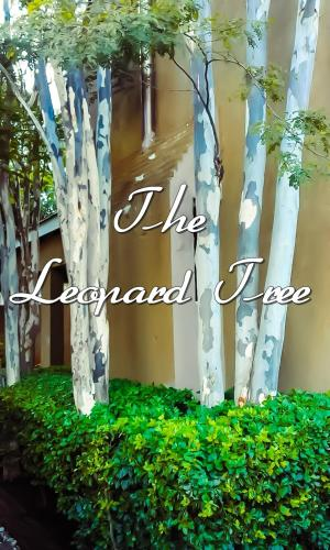 The Leopard Tree Photo
