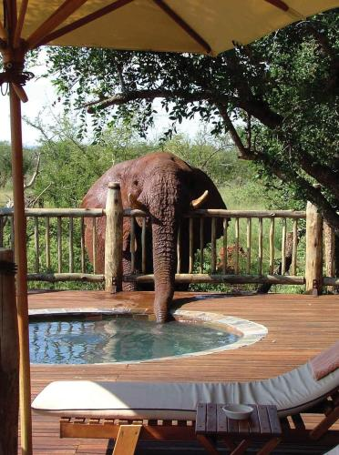 Etali Safari Lodge Photo