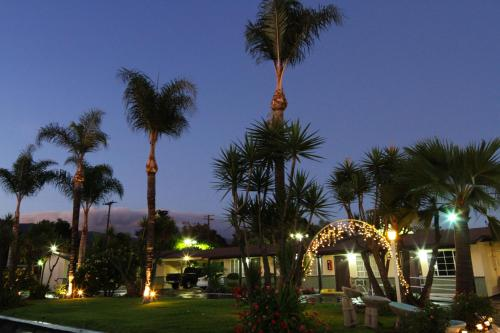 Palm Tropics Motel Photo