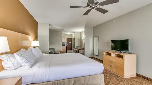 Holiday Inn Express & Suites Lubbock Southwest – Wolfforth Photo