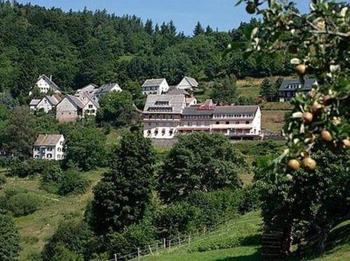 Hotel Roess Hohrod