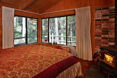Treehouse Lodge Photo