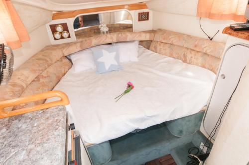 Boat hotel and tours photo 9