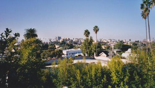 Amazing Hollywood Blvd View Photo