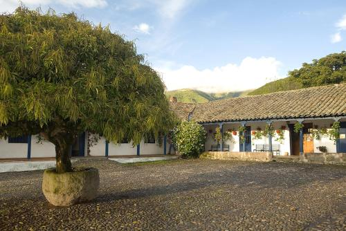Hacienda Zuleta Photo