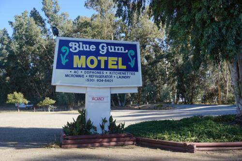 Blue Gum Motel Photo