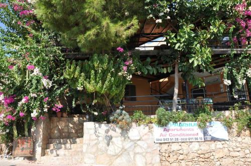 Patara Jet Pension adres