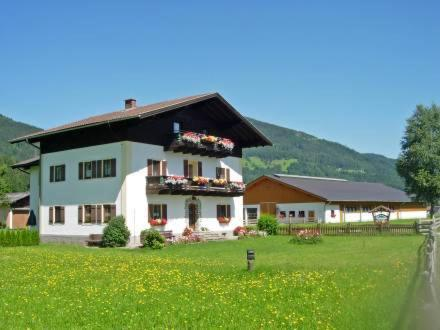 Feriengut Fingerhof Apartment Lackenkogel