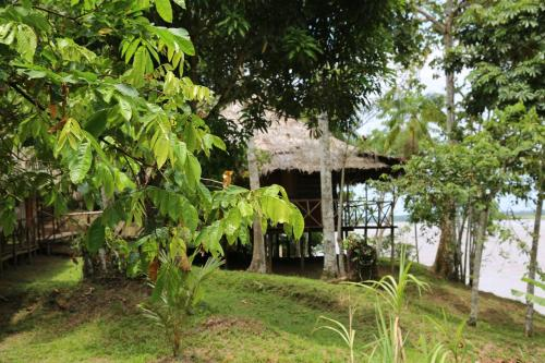 King of Compassion Resorts, Iquitos