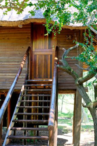 Zululand Tree Lodge Photo