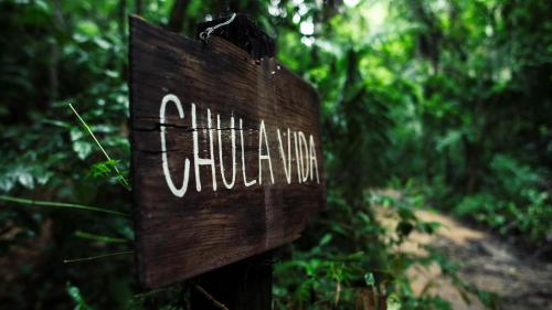 Chulavida (all-inclusive jungle house) Photo