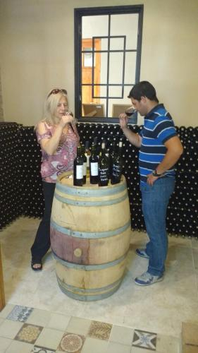 Posada Cavieres Wine Farm Photo