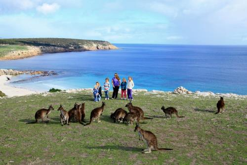 Waves & Wildlife Cottages Kangaroo Island袋鼠岛海浪野生小屋