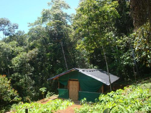 Isla Violin Eco-Lodge Photo