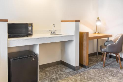 SpringHill Suites by Marriott Houston Brookhollow photo 28