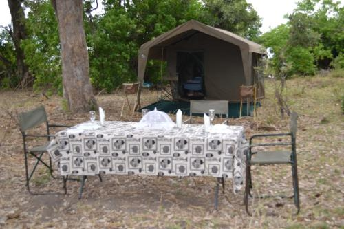 Mobile Safari Packages, Maun