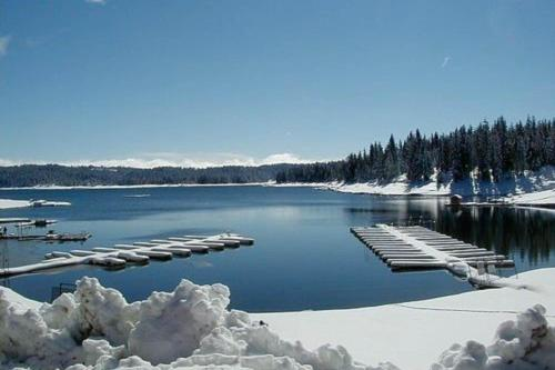 shaver lake senior singles Explore an array of shaver lake, ca vacation rentals, including houses, cabins & more bookable online choose from more than 162 properties, ideal house rentals for families, groups and couples rent a whole home for your next vacation.