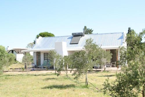 Boerfontein - Home of Olivision Photo