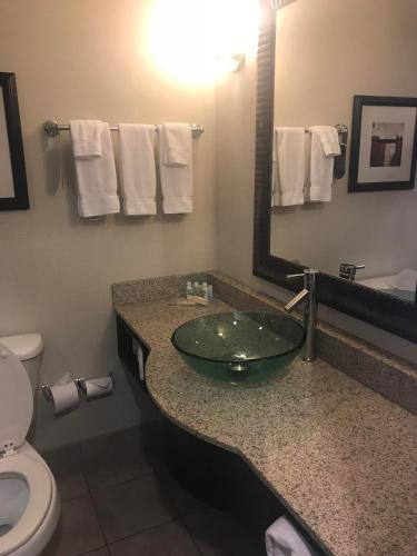 Holiday Inn Chattanooga-Hamilton Place Photo