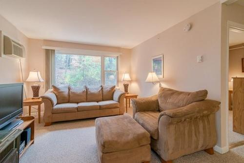 Condos at Mountainside Resort Photo