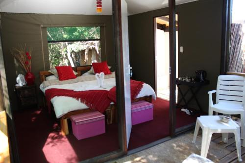 Tube 'n Axe Boutique Lodge Backpackers & Camping Photo