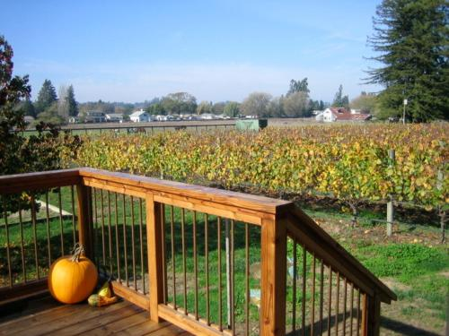 Pearlessence Vineyard Inn Photo