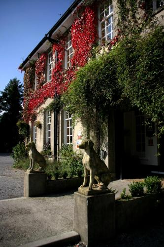 Photo of Ty Newydd Country Hotel Hotel Bed and Breakfast Accommodation in Hirwaun Rhondda Cynon Taff
