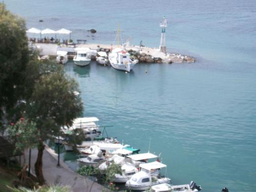 Arocaria Apartments in chania - 0 star hotel