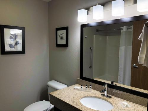 Country Inn & Suites By Carlson, Mt. Pleasant-Racine West Photo