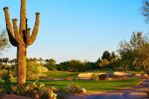 JW Marriott Phoenix Desert Ridge Resort & Spa photo 63