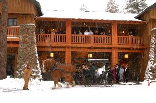 FivePine Lodge Photo